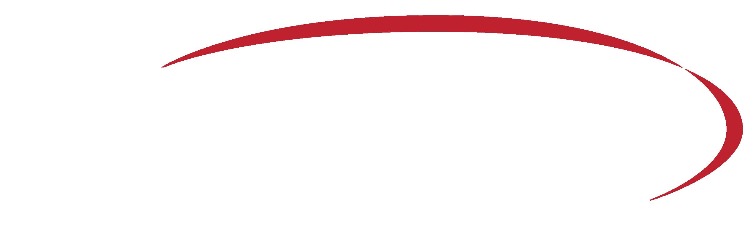 Venue Solutions Group